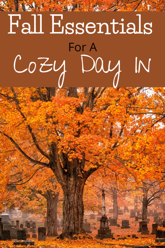 Fall Essentials for a Cozy Day In